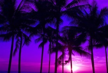 Hawaii / by Donna Miller