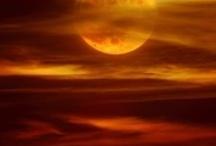 moonlights / by Del Taylor