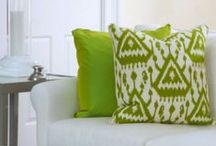Parakeet is our GREEN / by oomph online