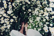 green&flowers / by mariko