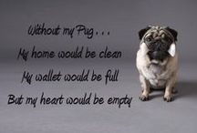Pugz ~(o.o)~ / ..... because they rule the world... we just live in it.   / by Lisa