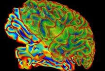 The BRAIN Initiative / Fascinating research on a fascinating subject: the human brain. / by National Institutes of Health