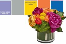 Spring trends 2014 / by Wendy McMonigle WM Design House