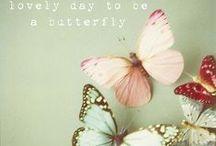 farfalle - mariposa - butterfly / by Robbye Lossing