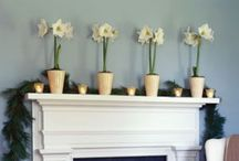 Decorating-Mantle/Shelves/Bookcases / by Abby P Savant