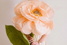 Crafty-Flowers, Pom Poms, Garland and More / by Abby P Savant
