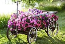 WAGON/WHEEL DECOR / by Leslie Janney