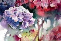 Watercolors / by Jewel Hofmann