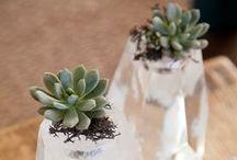 Floral Arrangement / by B Wedding Invitations