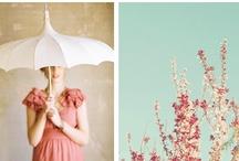 Wedding Themes / by B Wedding Invitations