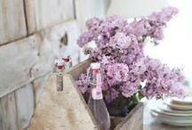 Flowers / by Sara Querzola
