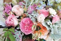 Wedding Day Botanicals / by Greenwich Letterpress / Amy + Beth