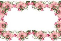 Frames - Floral / by Shanine Incley