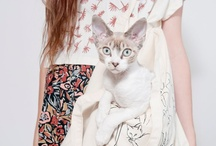 meow / i like cats. / by marissa | stylebook