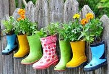 Home- Gardening / by Kelly {Eclectic Momsense}