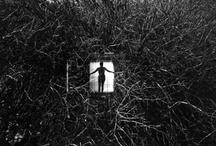 please don't open that door.... / by Lisa Carol