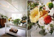 Dream studio / by Floret Flower Farm