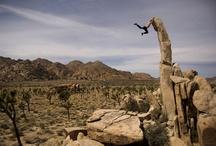 climbing / by Adam Shelton