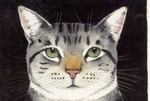 Cat / by Maja Augusta