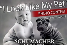 """I Look Like My Pet"" Photo Contest / Schumacher Homes, www.schumacherhomes.com, #SchumacherHomes #Pets #ContestIdeas / by Schumacher Homes"