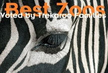 Zoos & Animal Encounters / Here are some Trekaroo approved zoos, safari parks, conservation centers, farms, and more that are all family-friendly. / by Trekaroo Family Travel