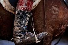 horses, cowboys & polo / by Lorena Beightler