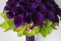 Purple!!! / by Vanessa Román Melgar
