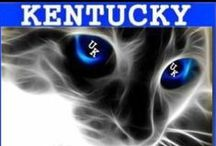 All things Kentucky , the Big Blue Nation / by Angie Phipps