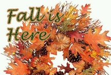 Fall is in the air! / by Sherry Brumfield-West