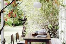 Gorgeous Garden Ideas / Outdoors/ gardens / by Sunny Chanel