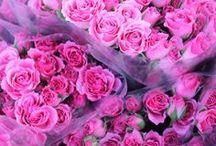 Les fleurs  / by Lina Svintozelskaya