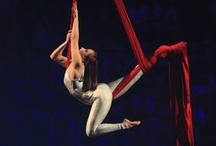 circus act / by Alysa Brown