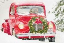 Christmastime / by Catherine / Snow Daisy Studio