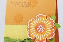 Mixed Bunch Cards SU / by Patricia Lemont