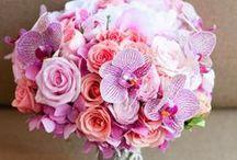 Wedding Flowers / by Daniela