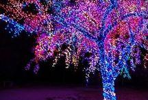 Christmas / by Karen