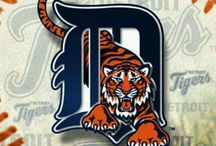 ⚾ TIGERS ⚾ / Love my team / by Ashley Flores