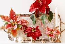 Christmas / by Sheri Johnston