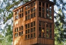 Cubby Houses / by Mandy