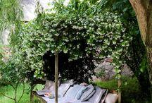 Garden Ideas / by Sophie B
