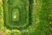 Places I'd Like to Go / by Kayla Nicole
