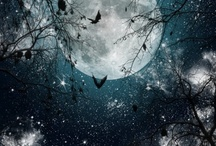 Man in the Moon / by Debbie Weaver