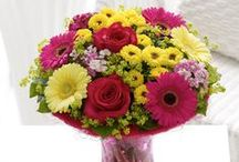 Best of Summer 2014 / Take in the warmth and joy of summer with our pick of flowers and plants from our Summer Collection 2014. / by Interflora - The flower experts