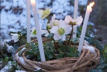 Imbolc *)O(* / by Chrysalis Woman