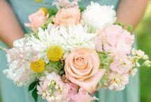 Our Wedding / by Stephanie Duve