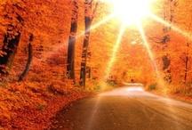 Autumn / by Kathy Doolittle
