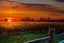Sunrise Sunset / by Kathy Doolittle