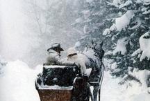 Let It Snow, Let It Snow... Let It Snow  / by Kathy Doolittle