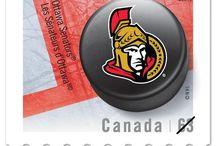 Ottawa Senators Hockey / by Jennifer White