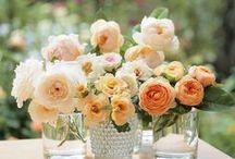 Peach Weddings / peach wedding flowers, bouquets, centerpieces, receptions, ceremonies, rustic, elegant, vintage, natural / by Fleurs De France